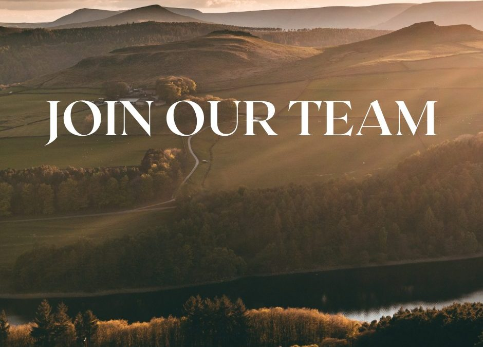 Join our team: We have a vacancy for a Junior Account Executive